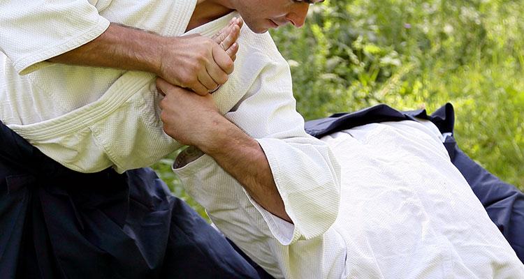 fesik-discipline-aikido